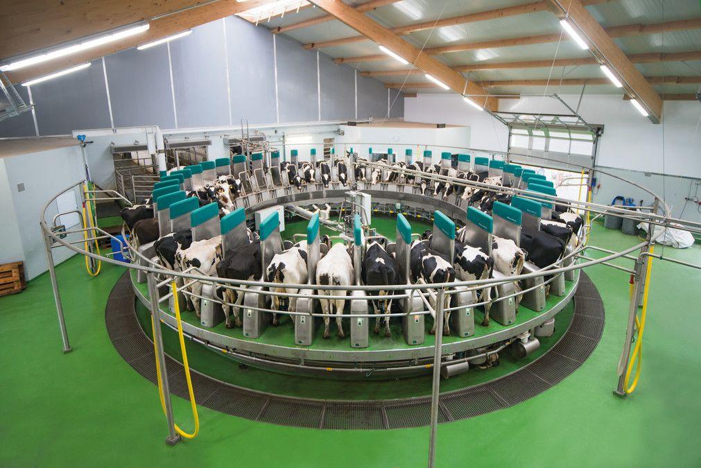 DairyProQ (5)