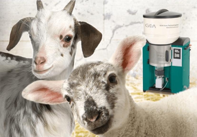 DairyFeed agnelli